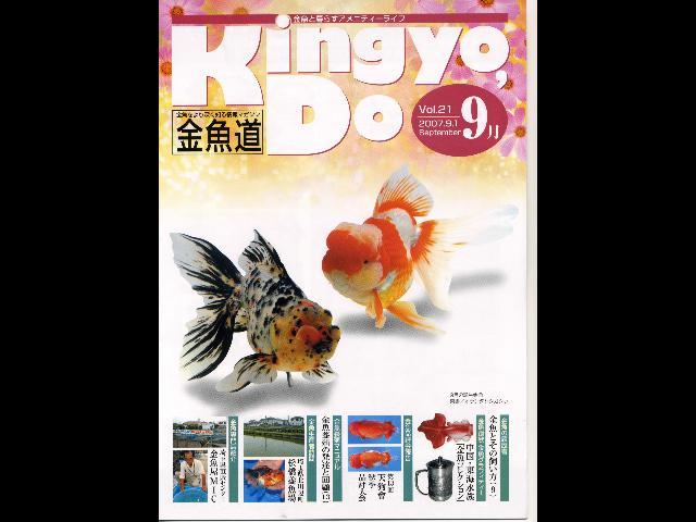 東京都内の金魚専門店 昔ながらの金魚屋さん7店舗 …